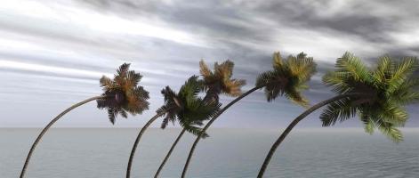 Se protéger des ouragans aux Etats Unis